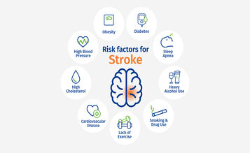 https://www.world-stroke-academy.org/media/uploads/2021/09/rsz_wso-risk-factors-diagram-v1.jpg