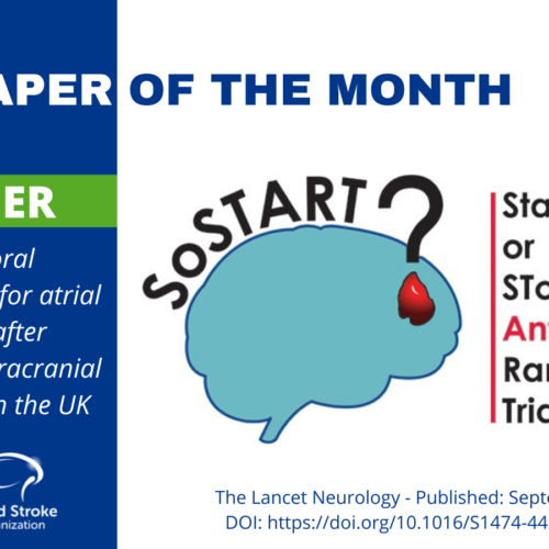The Paper of the Month October